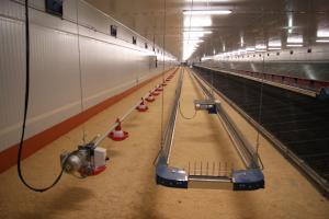 vista-interior-de-los-nidos-comederos-para-gallos-izquierda-y-gallinas-reproductoras-derecha---naves-de-reproductoras-en-ejea-de-los-caballeros 26313911372 o