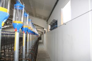 agrener-instalaciones-para-porcino 25826365604 o