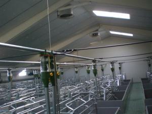 agrener-instalaciones-para-porcino 26338878302 o