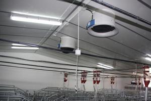agrener-instalaciones-para-porcino 26405277016 o