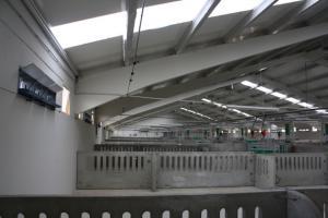 agrener-instalaciones-para-porcino 26405278116 o