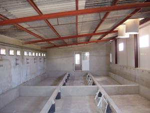 agrener-instalaciones-para-porcino 26405278996 o