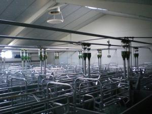 agrener-instalaciones-para-porcino 26431215665 o