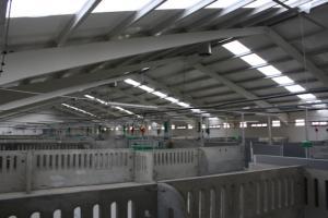 agrener-instalaciones-para-porcino 26431217125 o