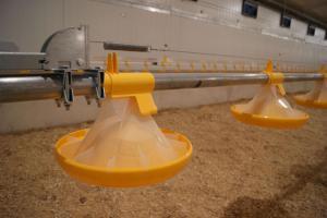 Nave avícola en Arroniz (Navarra) con ventilación Combitúnel SKOV A/S y alimentación LANDMECO.